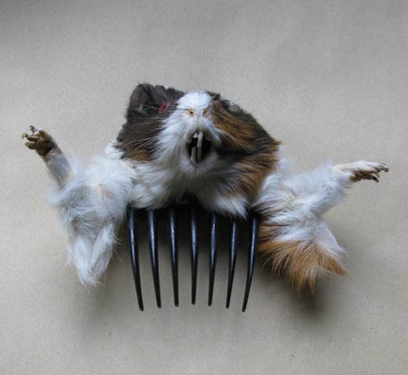 weird haircomb