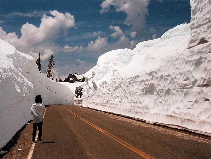 lot of snow google image